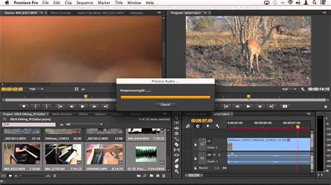 adobe premiere pro workflow dslr editing workflow in adobe premiere pro cc part 3
