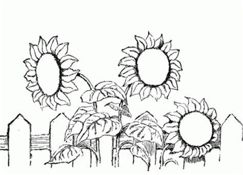 imagenes de jardines bonitos para colorear dibujo de flores en el jard 237 n dibujo para colorear de