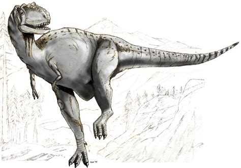 sketch book wiki file sketch albertosaurus jpg wikimedia commons
