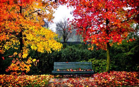 imagenes de paisajes bellos para facebook bellas im 225 genes de paisajes oto 241 ales para fondos de