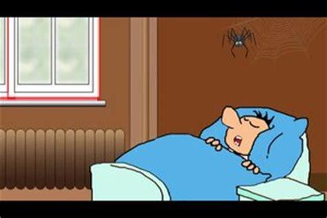 wie viele spinnen isst ein mensch im schlaf so - Wie Viele Spinnen Isst Ein Mensch Im Schlaf