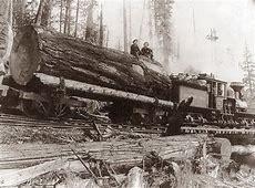 old logging photos washington state | Old Logging Camps ... Logging Camp History