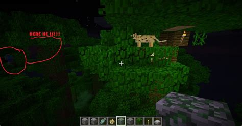 Sightings Sightings And More Sightings by Herobrine Sightings Scary Wp Content Uploads