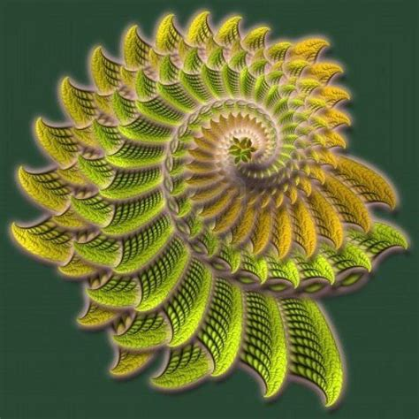 In Nature fractals in nature quilting ideas fractals