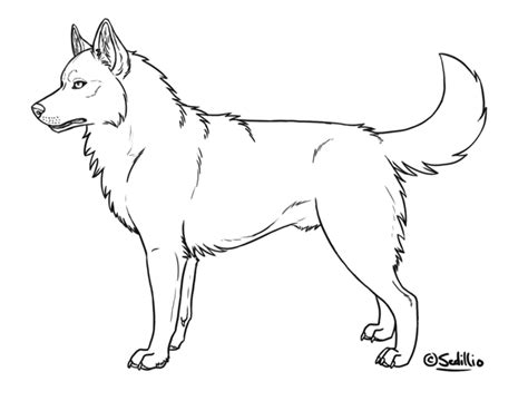 husky template husky puppy coloring pages