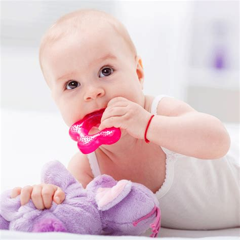 teething for babies your teething guide everything you need to about
