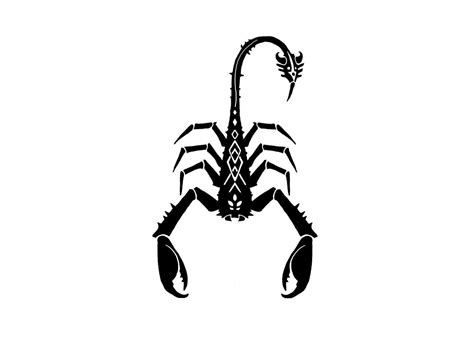 scorpion henna tattoo designs scorpion wallpapers wallpaper cave