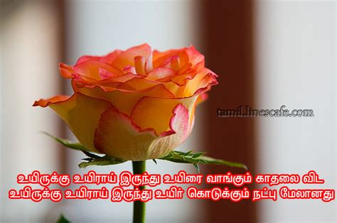 Cute Friendship Poem In Tamil With Photo   Tamil.LinesCafe.com