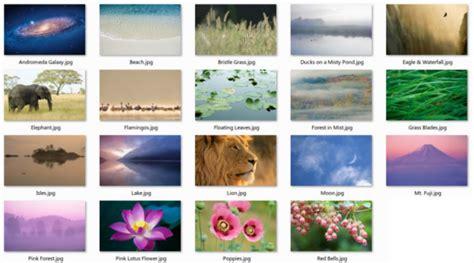 apple wallpaper pack download mac os x lion dp4 wallpaper pack