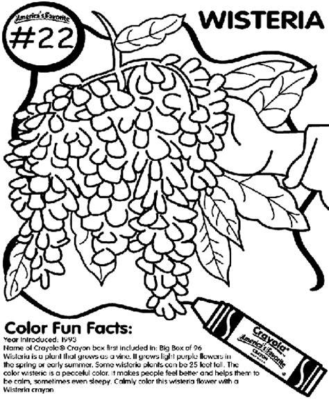 crayola coloring pages flowers no 22 wisteria coloring page crayola com
