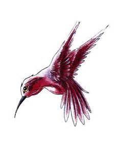 single hummingbird tattoo free design ideas