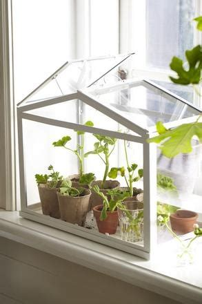 ikea greenhouse mini serre ikea wishlist pinterest kitchens
