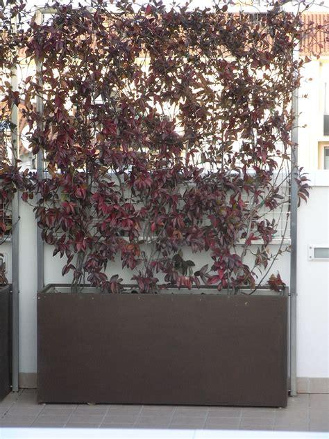 fioriere divisorie fioriere in ferro cor ten e acciaio inox con pannello
