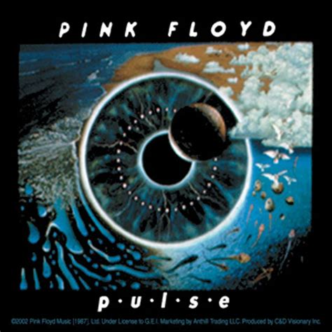 Home Decor Photo Frames by Pink Floyd Pulse Sticker