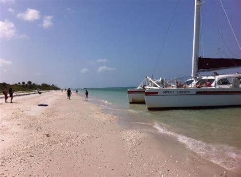catamaran boat naples fl morning shelling cruise picture of sweet liberty