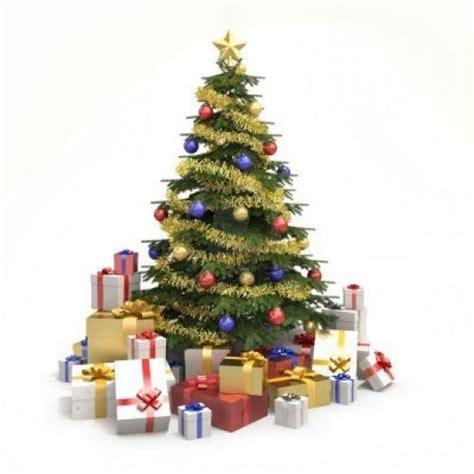 Wallpaper Gambar Pohon Dan Frame Photo logo dengan pohon cemara free clip free
