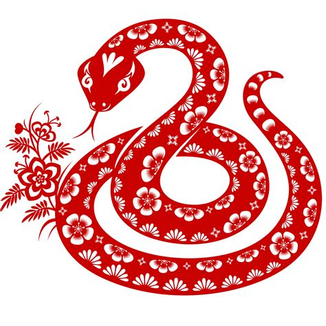 year of the snake 4 digital content agency