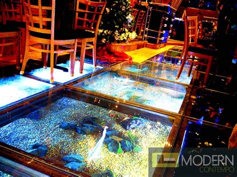 Zuritalia Floating River Glass Aquarium wall Floor