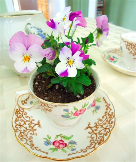 Tea Cup Planters For Sale by Vintage Teacup Planters A Great Fundraising Tool Garden