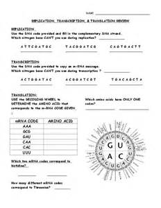 worksheets transcription and translation activity