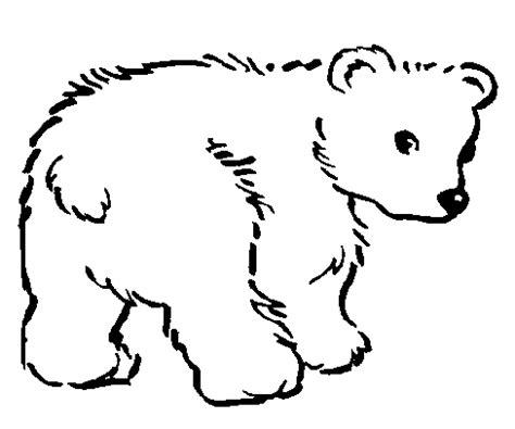 imagenes de leones y osos dibujos de animales