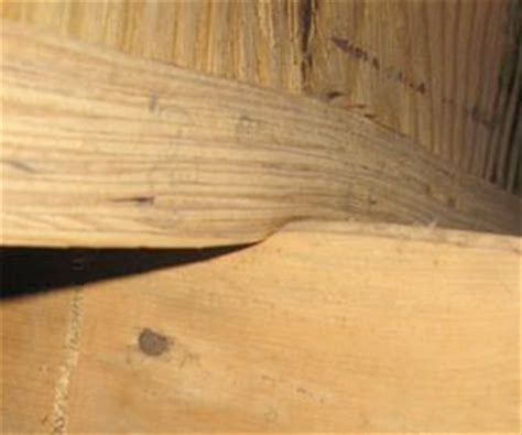 causes cures for sagging floors sagging floor joists