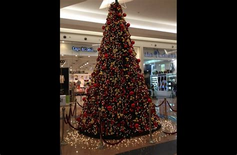 christmas tree preparation picture of the day egyptians prepare to celebrate multimedia ahram