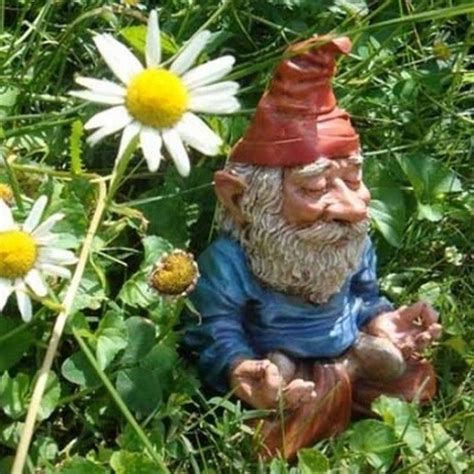 crazy lawn gnomes on pinterest garden gnomes gnomes and funny garden gnomes 15 pics cool products inventions