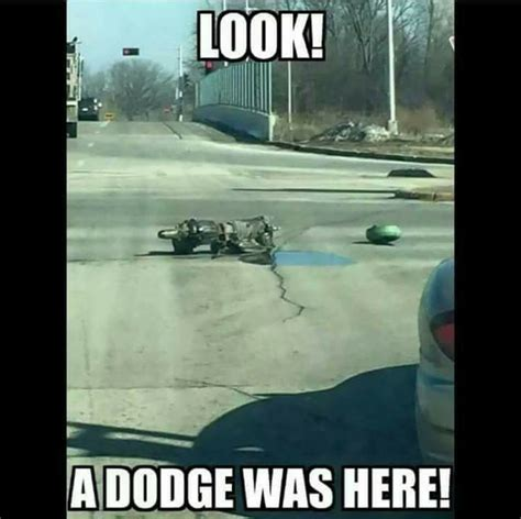 dodge memes dodge memes www pixshark images galleries with a bite