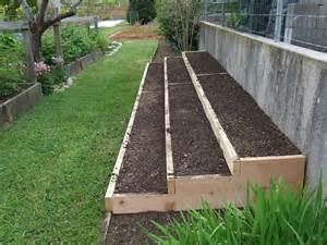 Growing Strawberries In Raised Beds by Garden Plants On 147 Pins