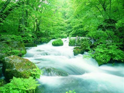 wallpaper pemandangan alam hijau gambar pemandangan alam indah alam mentari