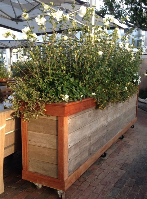 Terrasse Mit Sichtschutz 2621 by Moveable Large Privacy Planter For Screening On
