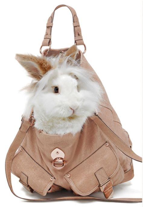 Rrrribbit In My Bag rabbit littleladylookbook