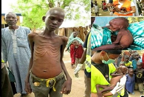death men in nigeria before the last idp starves to death in bama ahmed