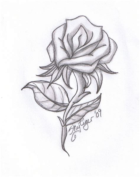 pencil drawings charcoal drawings and art galleries rose rose pencil drawing by skytiger on deviantart