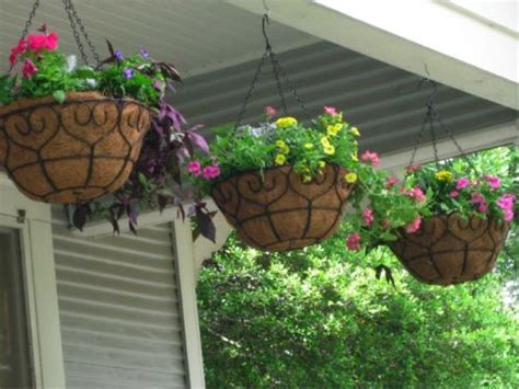 Hanging Garden Ideas 7 Things You Need To Create A Backyard Oasis On The Cheap Realty Times