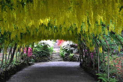 great british gardens bodnant garden  generations