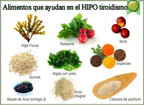 alimentos para el hipotiroidismo hipotiroidismo