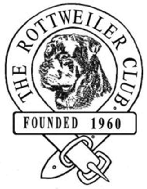 the rottweiler club the rottweiler club promoting the image of the breed
