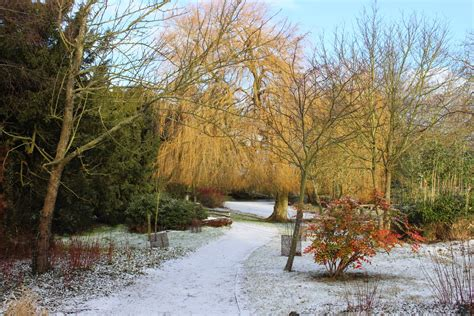 winter garden winter gardens