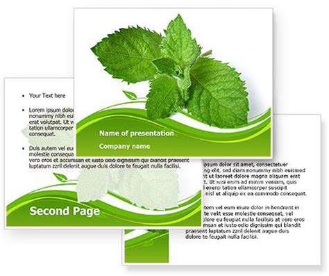 herb powerpoint themes 11 best images about free powerpoint templates on