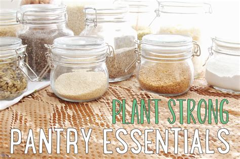 little vegan eats the vitamix my kitchen essential plant strong pantry essentials the plant philosophy