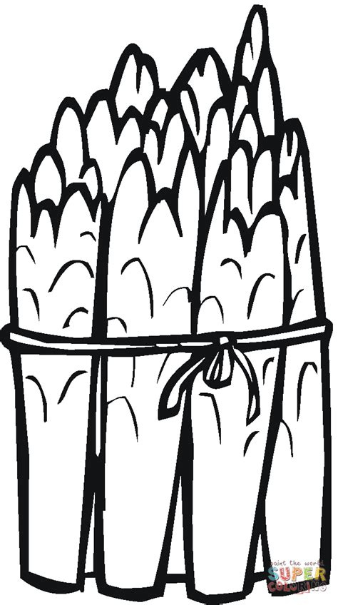 asparagus coloring page a bunch of asparaguses coloring page free printable