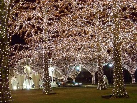 grand ole opry hotel lights opryland country events beautiful and far away