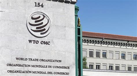 What is the WTO option?   MoneyWeek