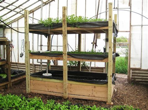 diy backyard aquaponics diy everything you need to know to build a simple