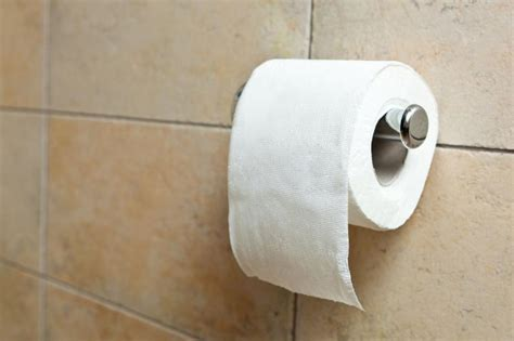 can u flush toilet paper in turkey turkish fatwa says toilet paper ok for muslims upi