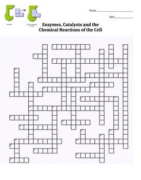 carbohydrates unit review crossword puzzle the world s catalog of ideas