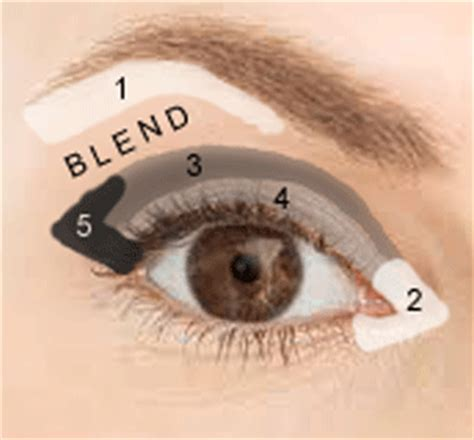 where do you go to apply for section 8 how to apply eye shadow the right way to make your eyes