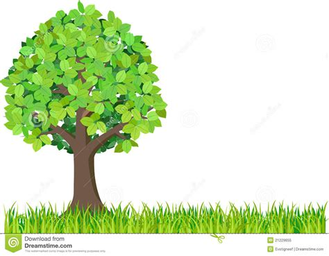 white or green tree grass and green tree isolated on white background stock